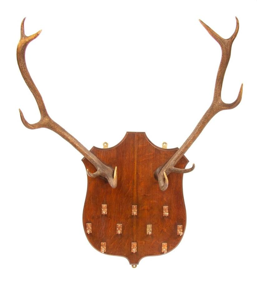 Highland Guest House Shield & Horns Coat Rack