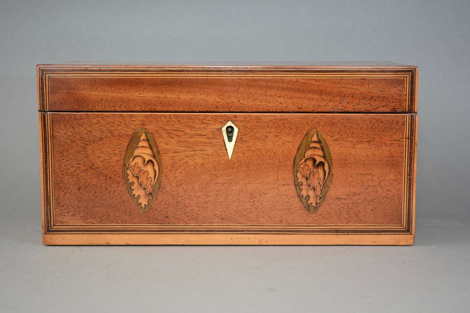 George III mahogany tea caddy with inlaid shell and flower motif c1800